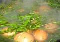 """俗语""""三月三煮鸡蛋"""",为啥要用荠菜煮鸡蛋?今天总算搞明白了!"""