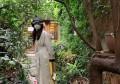 韩智慧晒她在济州岛的生活照,她和检察官老公的爱情比韩剧还唯美