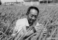 水稻之父袁老逝世,生前竟然穿价值百元的衣服